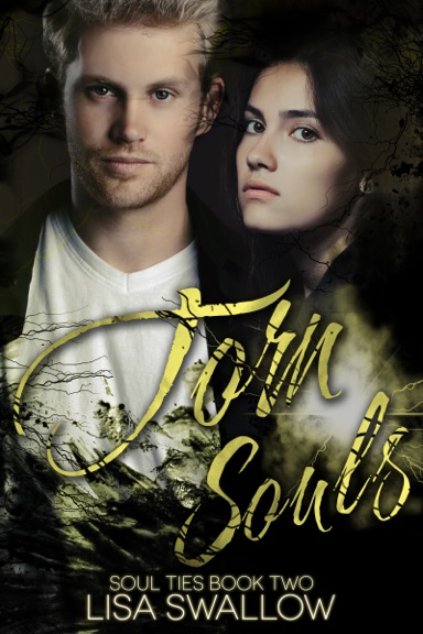 Torn Souls #2 by Lisa Swallow